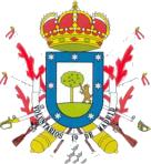 Voluntarios de Madrid